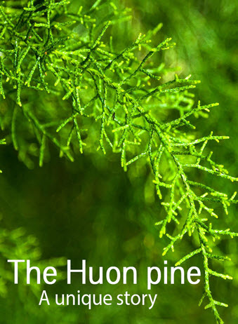 Huon pine a unique story