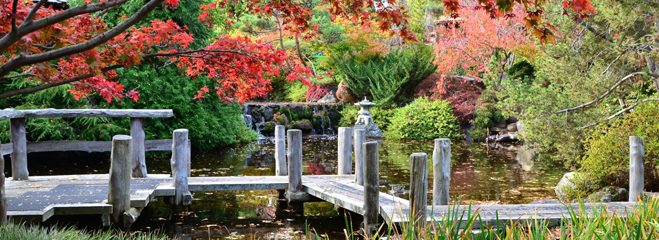 Zig-zag bridge in japanese_gardens