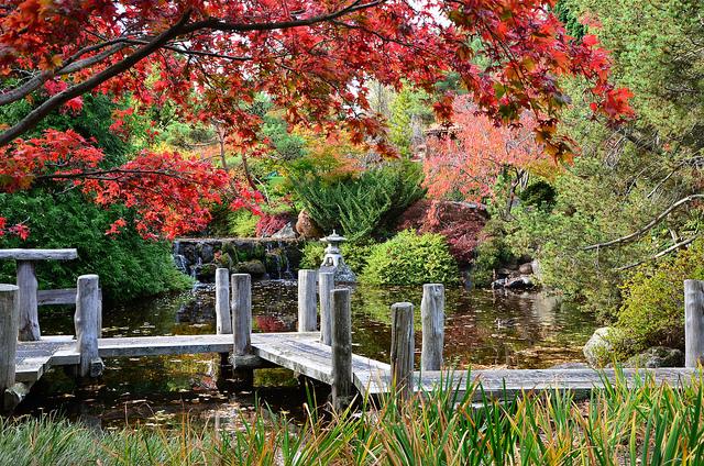 Japanese garden flat bridge