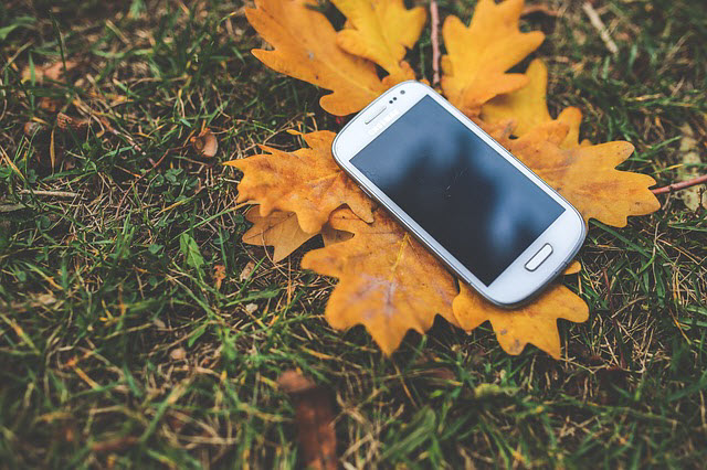 mobile phone laying on golden autumn eaves