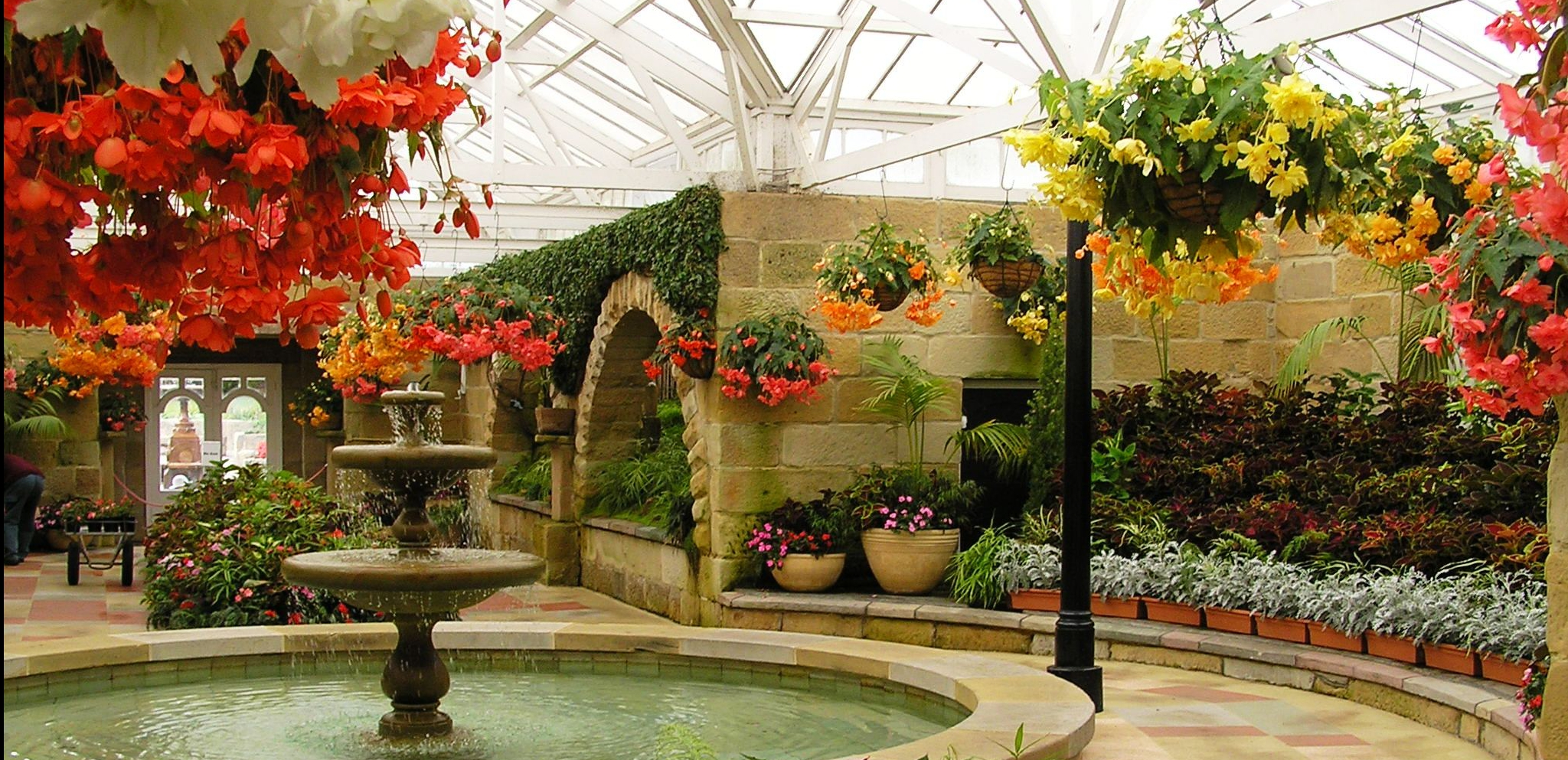 botanical gardens conservatory with orange tuberous Begonia's in hanging baskets
