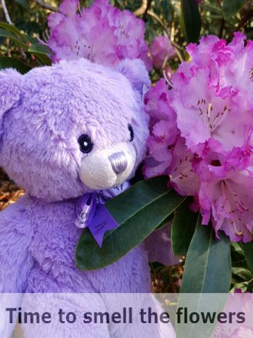 Bobbie smells the flowers