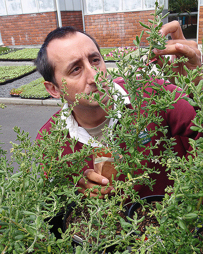 James Wood. Tasmanian Seed Bank Co-ordinator.