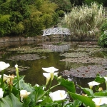 Lily Pond with arch bridge in the Gardens