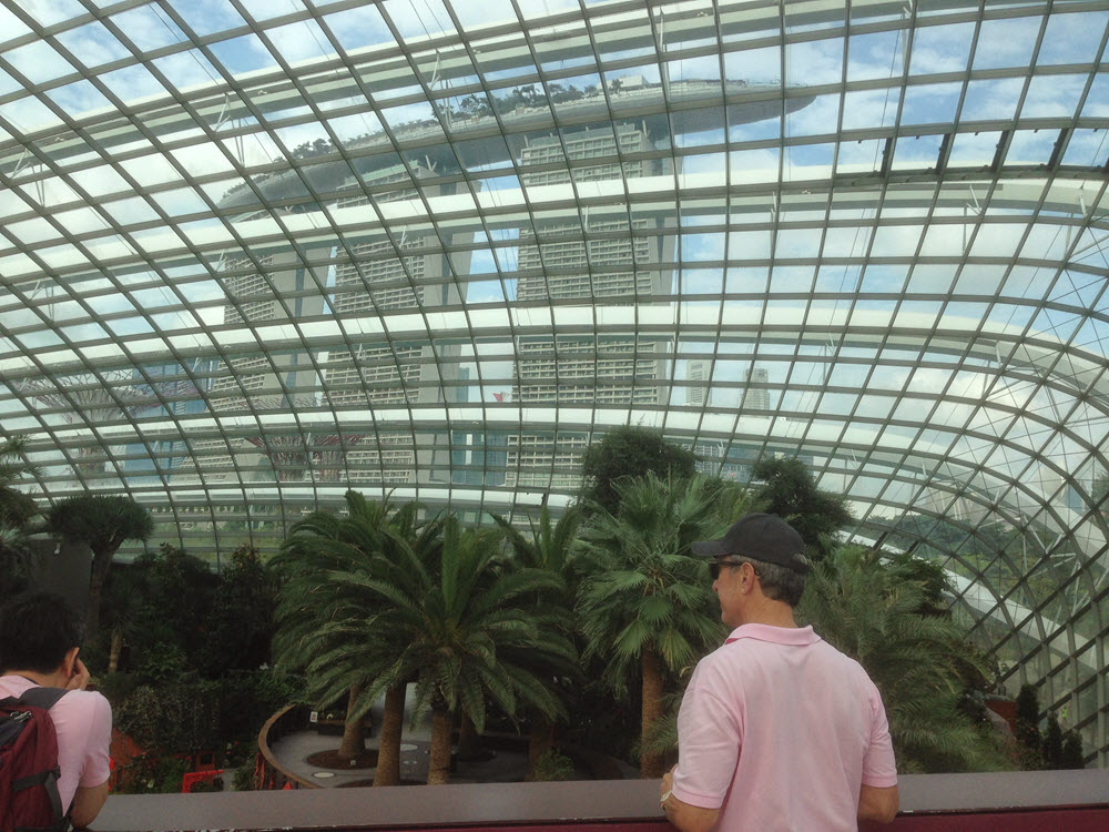 Marina Bay Sands Resort, Singapore, Architecture through the dome, gardens by the bay