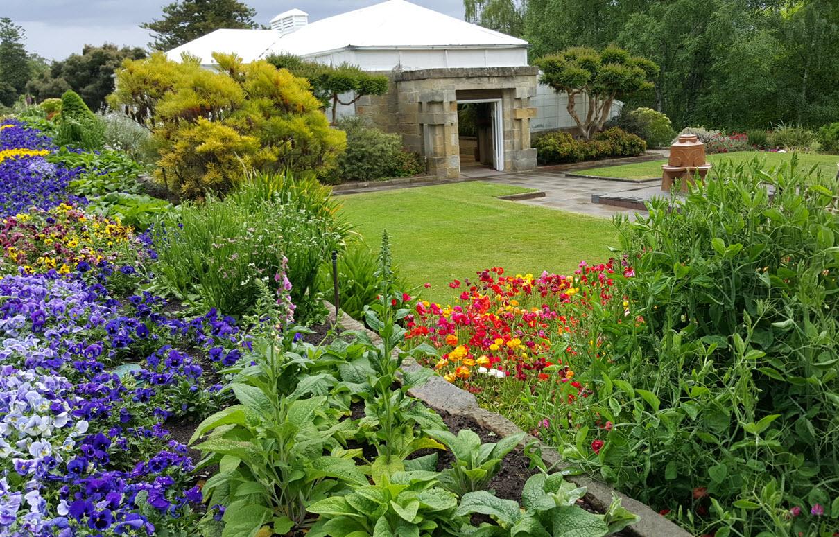Conservatory Royal Tasmanian Botanical Gardens Nov 2015