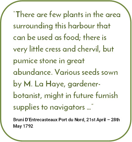 """There are few plants in the area surrounding this harbour that can be used as food; there is very little cress and chervil, but pumice stone in great abundance. Various seeds sown by M. La Haye, gardener-botanist, might in future furnish supplies to navigators …"" Bruni D'Entrecasteaux Port du Nord, 21st April – 28th May 1792"