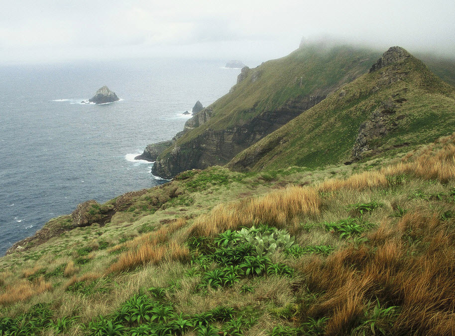 Col Lyall Ridge - This ridge is the rim of a large volcanic caldera, the sea side was the interior of the crater.