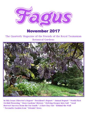 Fagus cover Nov 2017