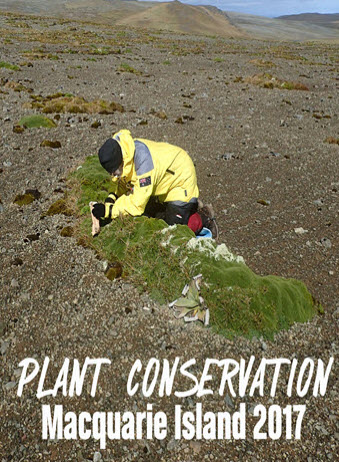 Macquarie isle Plant conservation