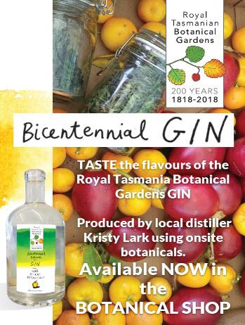 RTBG Gin promotion